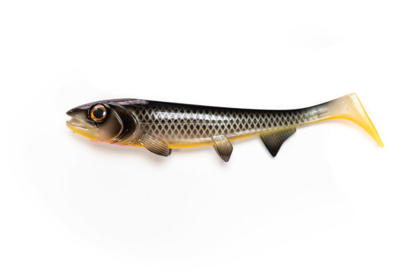 Hostagevalley Shad Camelion Roach
